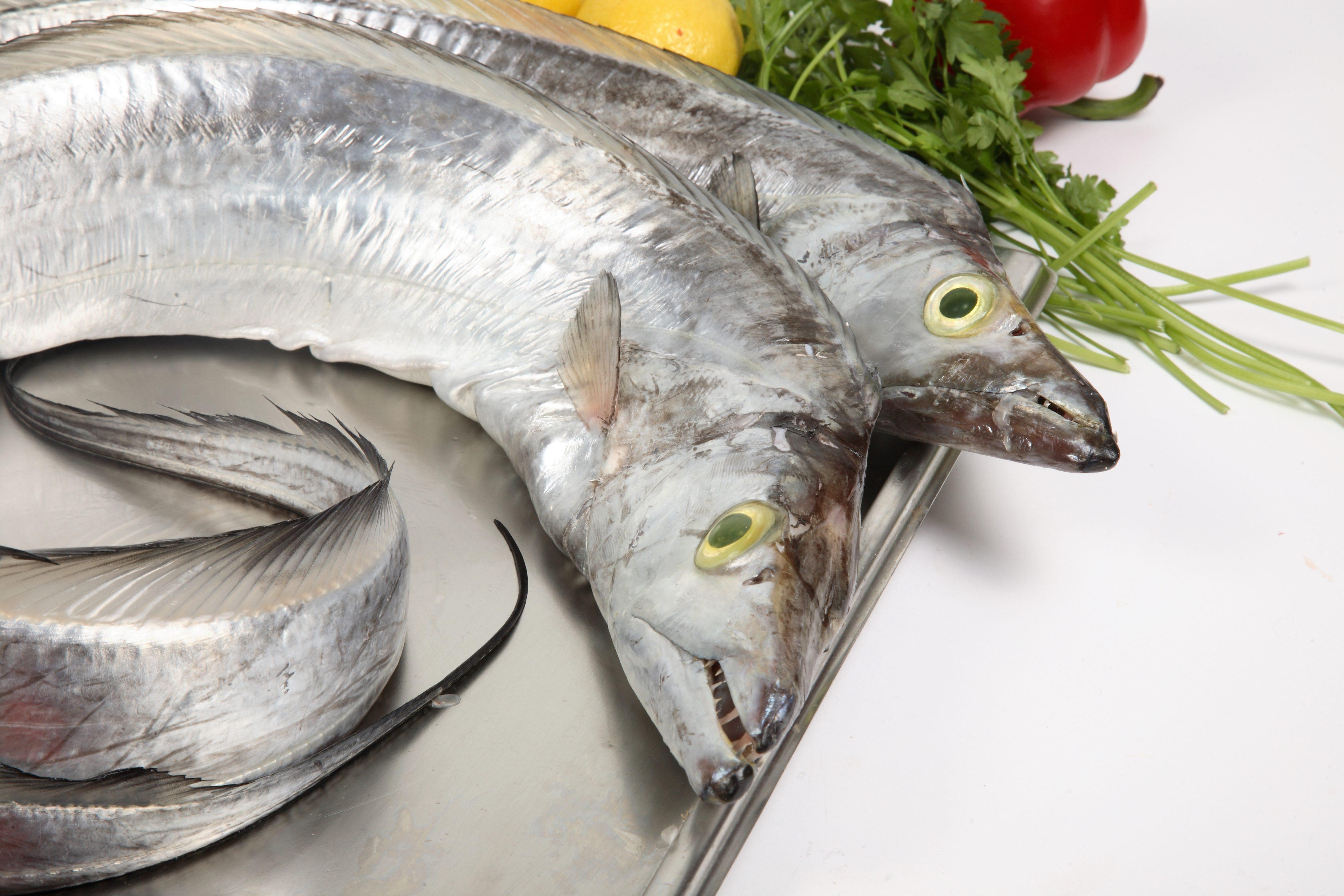 рыба сабля картинки этом случае